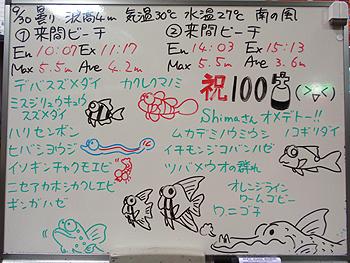 080930bloga.jpg