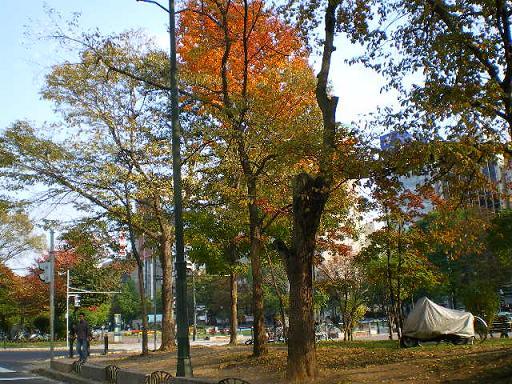 2008 大通り公園秋