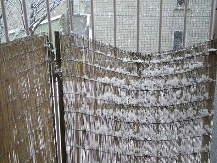 結構な雪です