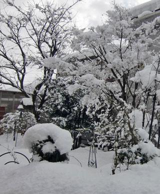2012-2-niwa.jpg