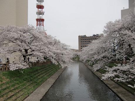 matukawa2012-4.jpg