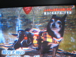 0522 003 テレビその