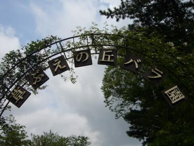 佐倉草ぶえの丘バラ園