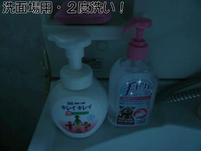 P1000569 2度洗い