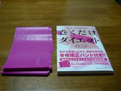 P1000733 本