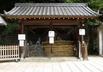 hibashinojo01.jpg
