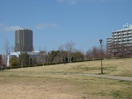 2008_031507.jpg