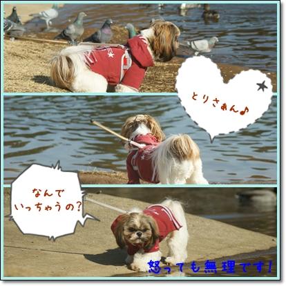 tori_20090202192941.jpg