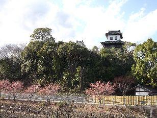 掛川 (6)