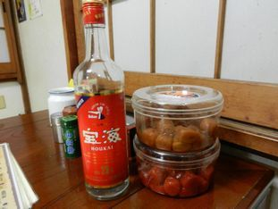 津田沼 鳥福+027