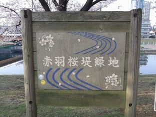通勤路桜4-9 (12)