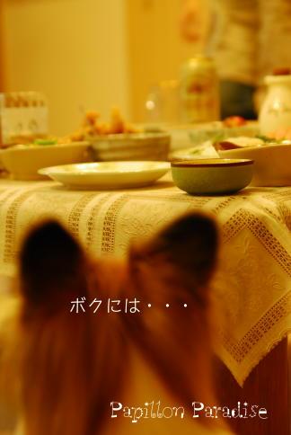 2008092712.jpg