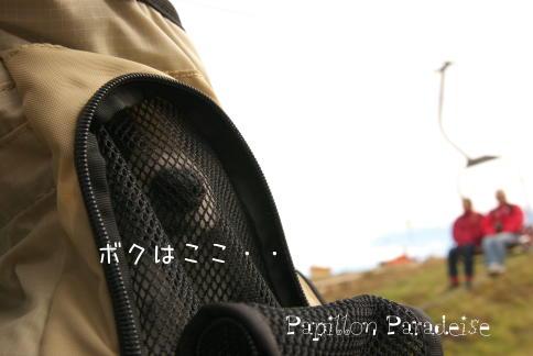 2008110208.jpg