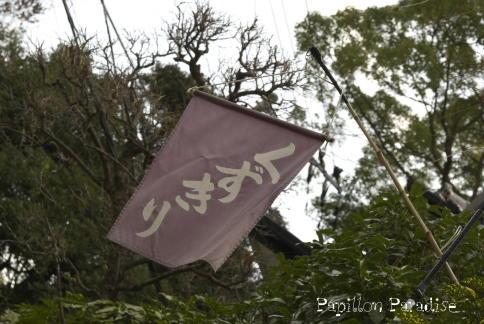 2008121307.jpg