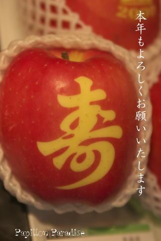 2009010215.jpg