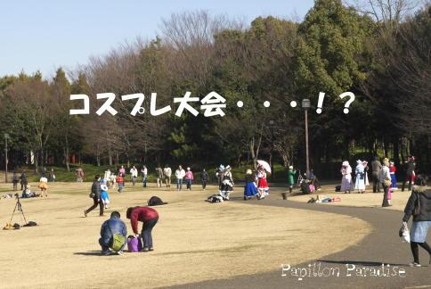 2009012503.jpg
