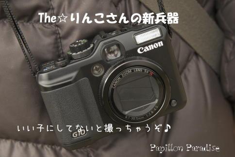 2009021104.jpg