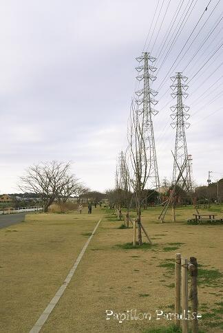2009032102m.jpg