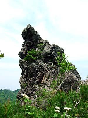 鳶岩 鳶岩のてっぺん
