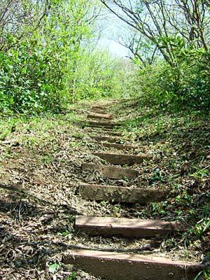小佐波御前山 最後の階段