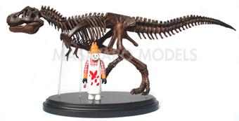 恐竜模型1