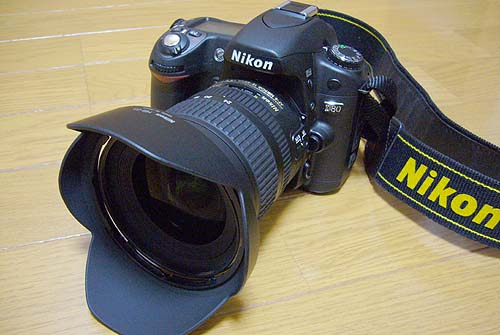 AF-S DX Zoom-Nikkor ED 12-24mm F4G(IF)