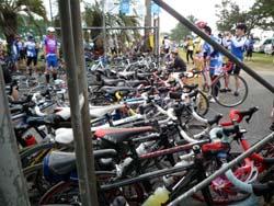 自転車たち1