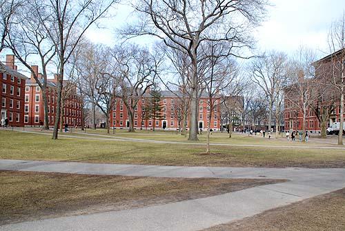 ハーバード1