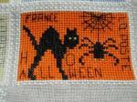黒猫&蜘蛛