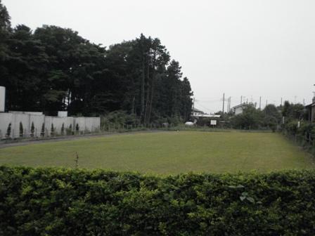 DSC07887.jpg