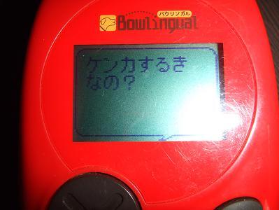 DSCF7064.jpg