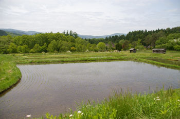 悠河さんの田舎:岩手の原風景