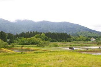 岩手の田園風景