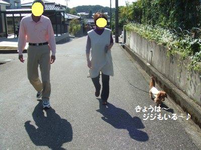 オトンは長くは歩けないので、ショートコースでお散歩。