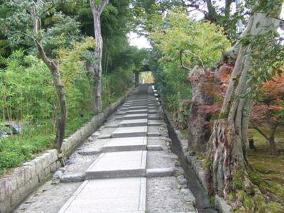 この坂道がキツいの!登りきったらゼェゼェ言ってたよ・・・。←体力なさすぎ