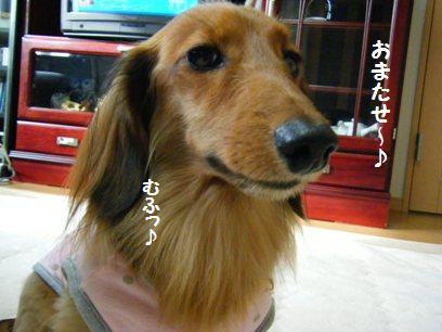変な顔~(^m^)