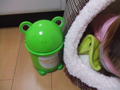 他にもパンダさん・ヒヨコさんがあったよ!カエルまにあはコレを選択☆
