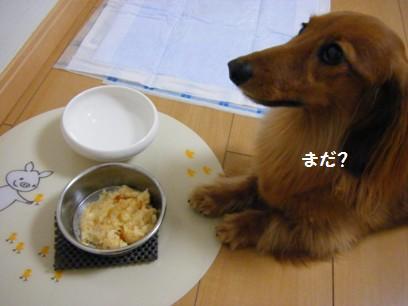 勢いよく食べるので下に滑り止め敷いておかないと(^^;)