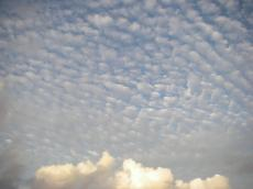 20080708-8.jpg