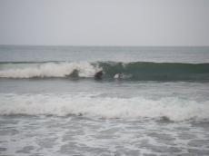 20080914-9.jpg