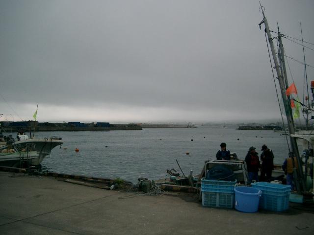 陸奥湾カレイ釣り21-6-14-2