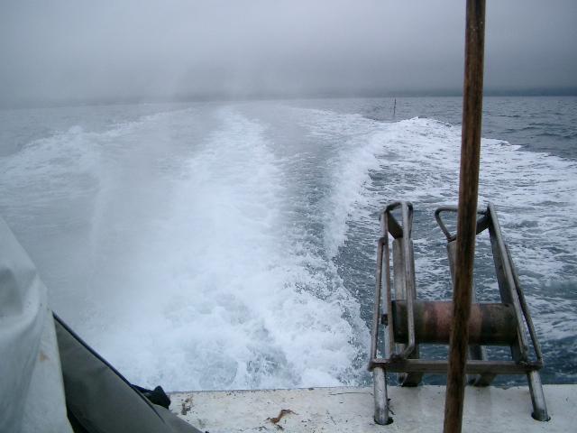 陸奥湾カレイ釣り21.6.14-20