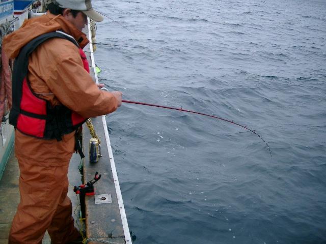 陸奥湾カレイ釣り21.6.14-30