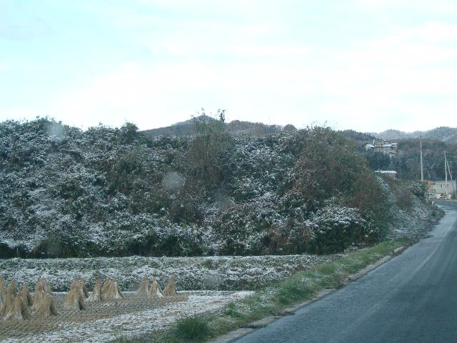 11月3日雪景色3
