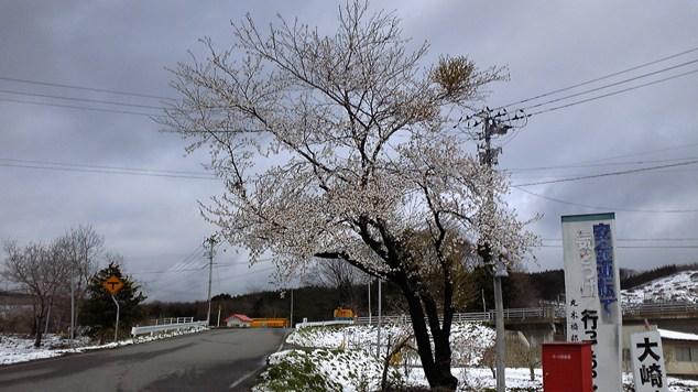 九戸風景5.30-6