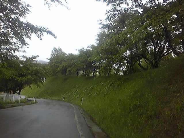 九戸風景5.30-15