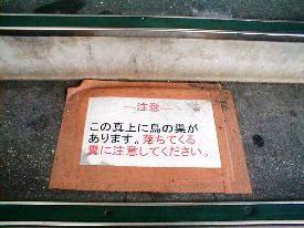 JR駅①階段 2009.5.12