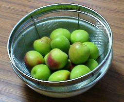 ①梅を洗う 2009.6.5