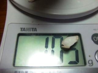 体重測定 060709