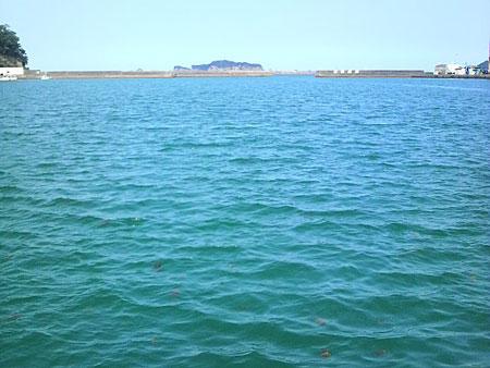目井津港の海側の写真